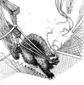 sabotage badger 395x400